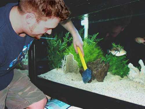 Как чистить аквариум в домашних условиях, часто ли нужно мыть